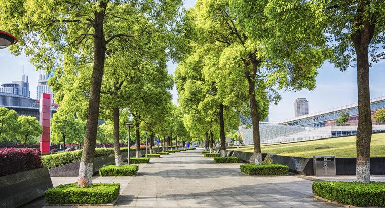 Objetivo 11: Lograr que las ciudades sean más inclusivas, seguras, resilientes y sostenibles